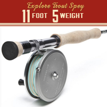 Trout Spey/Switch