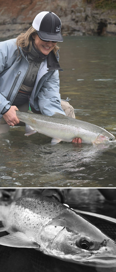 STEELHEAD-SIDE-BANNER